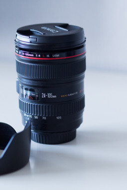 canon 24-105mm L lens review 4 | ©THE VIEWFINDER